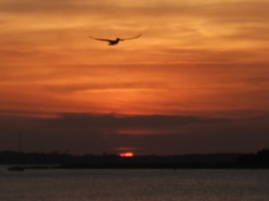 Sunsets 001