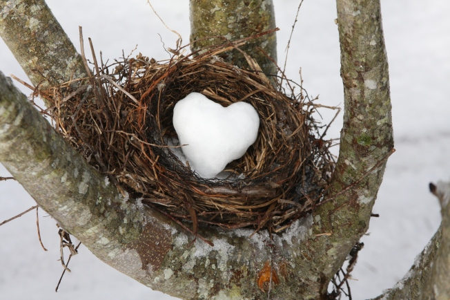 Snow Valentine