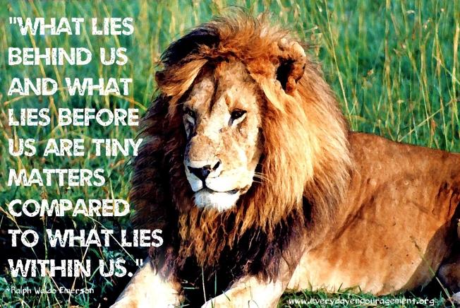 Grunge font Kenya liondry brush eyes softlook2095_edited-1